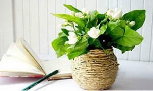 Diy Jar Flowerpot