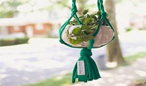 Great Decoration Idea
