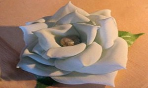 Diy White Rose