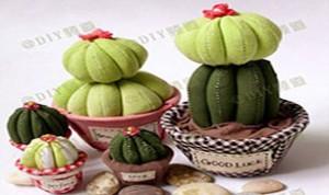 Diy Cute Cacti