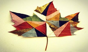 Beautiful Leaves Craft
