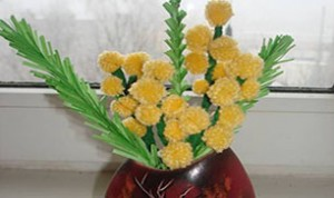 Easy And Beautiful Bonsai