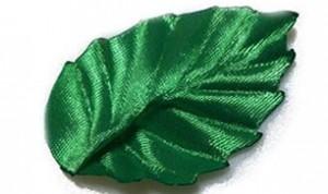 Diy Green Leaf