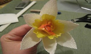 Very Beautiful Flower