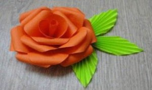 Diy Beautiful Flower