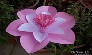 Diy Beautiful Pink Flower