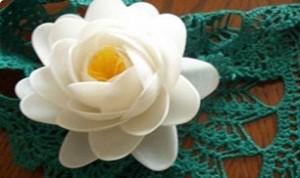 So Beautiful Flower