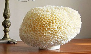 Diy Honeycomb