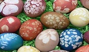So Cute Egg Craft