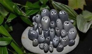 Diy Cute Stone Craft