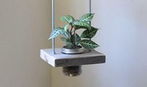 Great Jar Bonsai Idea
